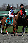 27 March 2010: Dean's Kitten with Cornelio Velasquez up in  the post parade for the 39th running of the G2 Lane's End Stakes at Turfway Park in Florence, Kentucky.