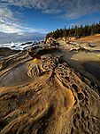 Swirling sandstone rock formations along the coast at the Shore Acres State Park in Oregon, USA