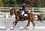 17 October 2008:  Former Olympian Leslie Law, of Great Britain, and Fleeceworks Mystere Du Val sit in first place after the dressage section of the Fair Hill International CCI*** Championship at Fair Hill Equestrian Center in Fair Hill, Maryland.  Dressage is the first stage of the three-day event.