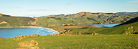 Sandfly Bay and farmland on Otago Peninsula, Coastal Otago, East Coast, New Zealand