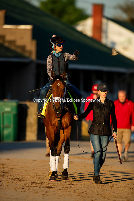 April 27, 2021:  Sainthood heads track to prepare for the Kentucky Derby at Churchill Downs in Louisville, Kentucky on April 27, 2021. EversEclipse Sportswire/CSM