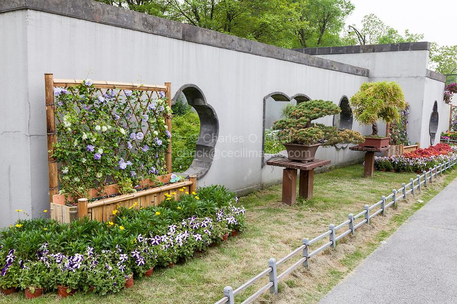 Yangzhou, Jiangsu, China.  Bonsai Garden, Slender West Lake Park.