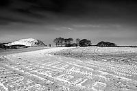 The Craigie, Duncarnock Fort, from Glanderston, Barrhead, East Renfrewshire
