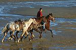 MAN ON HORSE RETURNES RENTAL HORSES TO STABLES