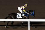Jockey Sam Clipperton riding Fantastic Feeling during the race number 6 at Sha Tin racecourse on November 1, 2017 in Hong Kong, China. Photo by Marcio Machado / Power Sport Images