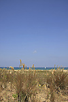Israel, Sharon region, dunes at Hadera coast