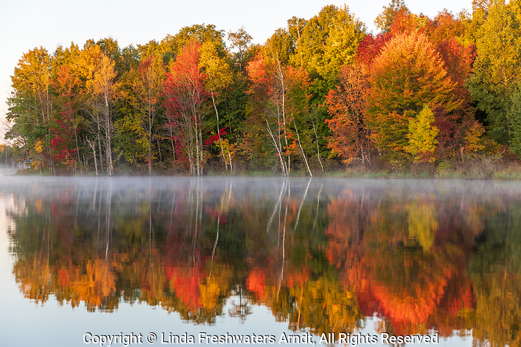 Fall colors on a wilderness lake in northern Wisconsin.