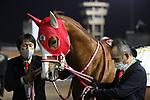February 20 2021: Scenes from an undercard race on Saudi Cup Day at King Abdulaziz Racecourse, Riyadh, Saudi Arabia. Shamela Hanley/Eclipse Sportswire/CSM