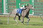 30 MAY 2010: Strike It Rich, Garrett Gomez up, wins The Little Silver Stakes at Monmouth Park.