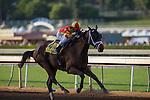 SEP 27,2014:Angela Renee,ridden by Rafael Bejarano,wins Chandelier Stakes at Santa Anita Park in Arcadia,CA. Kazushi Ishida/ESW/CSM