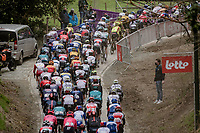peloton up the brutal Moskesstraat<br /> <br /> 61st Brabantse Pijl 2021 (1.Pro)<br /> 1 day race from Leuven to Overijse (BEL/202km)<br /> <br /> ©kramon