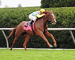 Dayatthespa and Javier Castellano win the Queen Elizabeth II Challenge Cup at Keeneland Racecourse.October 13, 2012.