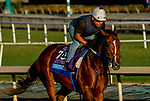 October 26, 2019 : Breeders' Cup Juvenile  entrant Shoplifted, trained by Steven M. Asmussen, exercises in preparation for the Breeders' Cup World Championships at Santa Anita Park in Arcadia, California on October 26, 2019. Scott Serio/Eclipse Sportswire/Breeders' Cup/CSM