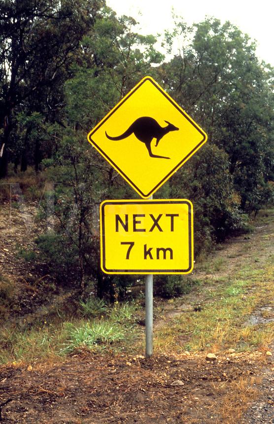 Sign warning of kangeroos crossing, Australia
