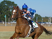 4th Colonial Cup - Divine Fortune