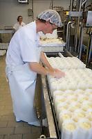 Europe/France/Normandie/Basse-Normandie/14/Calvados/Pays d'Auge/Saint-Pierre sur Dives/Boissey: Production du Livarot au lait cru à la fromagerie La Houssaye