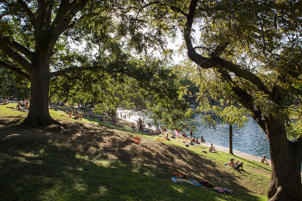 Barton Springs large natural springs pool is framed by tall Oak trees and a grassy, hill-covered lawn where visitors like to lay out and soak in the sun, nap, or read a good book between dips.