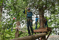 Rope course in the tree canapy, Ketchikan Rainforest canopy ropes and zipline park, Alaska, USA