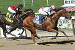 """September 27, 2014: Vyjack with Irad Ortiz, Jr. win the 75th running of the $400,000 Grade I Vosburgh Stakes, a """"Win and You're In""""  3-year olds & up, going 7 furlongs at Belmont Park. Trainer: Rudy R. Rodriguez. Owner: Pick Six Racing. Sue Kawczynski/ESW/CSM"""