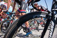 Castellon, SPAIN - SEPTEMBER 7: Giant bike during LA Vuelta 2016 on September 7, 2016 in Castellon, Spain