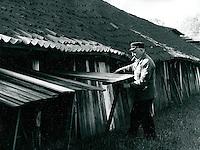 Ziegelei in Drochtersem, Niedersachsen, Deutschland 1986