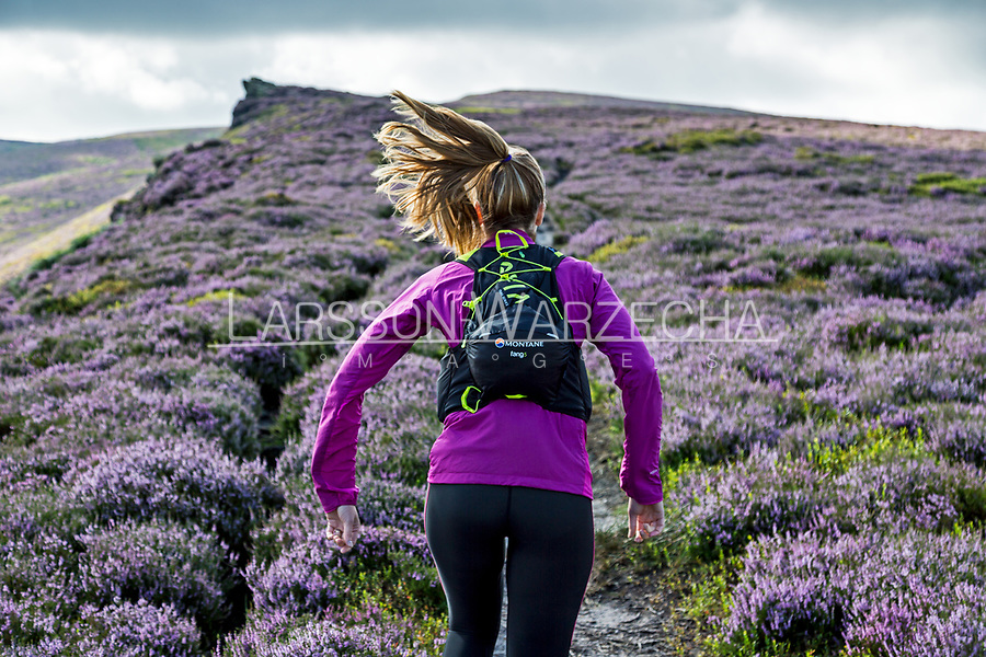 Female runner on a trail with beautiful heather in full bloom.