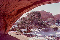 Winter arch, January morning, Arches NP