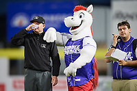 Binghamton Rumble Ponies mascot Rowdy delivers water to umpire Mike Provine during a game against the Akron RubberDucks on May 12, 2017 at NYSEG Stadium in Binghamton, New York.  Akron defeated Binghamton 5-1.  (Mike Janes/Four Seam Images)