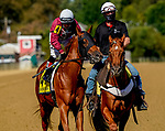 October 3, 2020:  Laki #4, ridden by jockey Horacio Karamanios, wins the Frank J. DeFrancis Memorial Dash during Preakness Stakes Day at Pimlico Race Course in Baltimore, Maryland. John Voorhees/Eclipse Sportswire/CSM