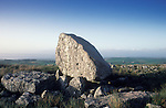 Arthurs Stone, Reynoldston, West Glamorgan  Wales. On Cefyn Bryn Common, overlooking  Loughor estuary.