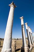 Nordzypern, antike Stadt Salamis, römisches Gymnasium