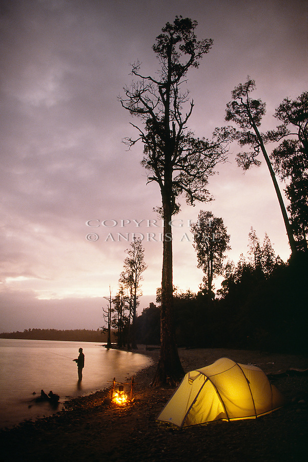 Fly fishing in Lake Brunner. Tent illuminated. Westland Region. New Zealand. Vertical format.