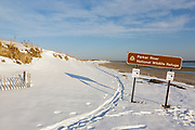 Parker River National Wildlife Refuge on Plum Island, Massachusetts during the winter months. Established in the 1940s, this refuge consists of over 4,000 acres, and because it is located along the Atlantic Flyway it provides a habitat for migratory birds.