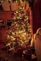 A decorated and lighted Christmas tree with presents underneath at night in Sonoma County California