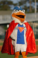 Myrtle Beach Pelicans mascot Splash Pelican (50) before a game against the Frederick Keys at Ticketreturn.com Field at Pelicans Ballpark on April 8, 2016 in Myrtle Beach, South Carolina. Frederick defeated Myrtle Beach 5-2. (Robert Gurganus/Four Seam Images)