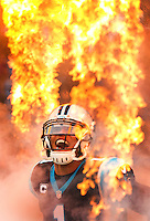 Carolina Panthers 2016-2017
