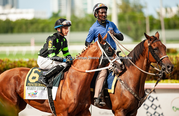 June 29, 2019: #6 Stormy Embrace wins the $250,000 Grade II Princess Rooney Handicap, a Breeders Cup Challenge Series race, during the Summit of Speed Stakes Day at Gulfstream Park on June 29, 2019 in Hallandale Beach, FL. (Photo by Carson Dennis/Eclipse Sportswire/CSM)