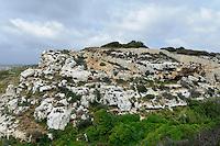 Blick von der Bingemma-Kapelle, Malta, Europa