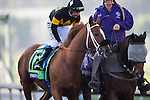 ARCADIA, CA - NOVEMBER 05: Finest City #12, ridden by Mike Smith, is preparing for the Breeders' Cup Filly & Marie Sprint during day two of the 2016 Breeders' Cup World Championships at Santa Anita Park on November 5, 2016 in Arcadia, California. (Photo by Kaz Ishida/Eclipse Sportswire/Breeders Cup)