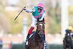 November 3, 2018: Enable #2, ridden by Frankie Dettori, wins the Longines Breeders' Cup Turf on Breeders' Cup World Championship Saturday at Churchill Downs on November 3, 2018 in Louisville, Kentucky. Alex Evers/Eclipse Sportswire/CSM