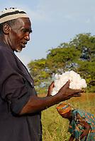 MALI Bougouni, Fair trade und Biobaumwolle Projekt - Biofarmer Diéba Bagayoko aus Dorf Faragouaran bei Baumwollernte  | .MALI Bougouni, fair trade and organic cotton project, farmer Diéba Bagayoko of village Faragouaran