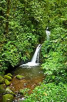 Waterfall in tjhe Monteverde Cloud Forest Biological Reserve, Costa Rica.