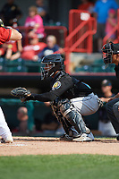 Akron RubberDucks catcher Francisco Mejia (17) awaits the pitch during a game against the Erie SeaWolves on August 27, 2017 at UPMC Park in Erie, Pennsylvania.  Akron defeated Erie 6-4.  (Mike Janes/Four Seam Images)