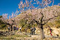 Sierra de Aitana Feb14