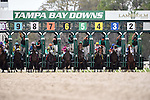 OLDSMAR, FLORIDA - MARCH 12: Destin #7, ridden by jockey Javier Castellano, at the start of the race, where he eventually breaks the track record, and wins the Lambholm South Tampa Bay Day Derby at Tampa Bay Downs on March 12, 2016 in Oldsmar, Florida (photo by Doug DeFelice/Eclipse Sportswire/Getty Images)