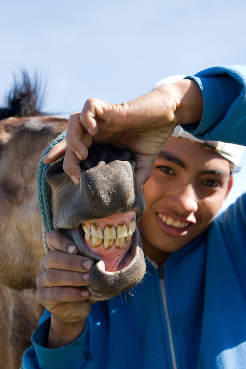 Teenage Guatemalan boy holds open the mouth of his horse revealing teeth on Volcan de Pacaya en Guatemala
