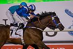 DUBAI,UNITED ARAB EMIRATES-MARCH 26: Huarrab,ridden by Paul Hanagan,wins the Dubai Golden Shaheen at Meydan Racecourse on March 26,2016 in Dubai,UAE (Photo by Kaz Ishida)