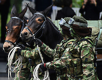 BOGOTA - COLOMBIA - 20 -07 - 2016: Miembros de la Fuerzas Militares de Colombia, desfilan durante la ceremonia con motivo del 206 aniversario del Dia de la Independencia Nacional. / Members of the Military Forces of Colombia, parading during the ceremony to mark the 206 anniversary of the National Independence Day. Photo: VizzorImage / Mauricio Orjuela- Min Defensa? / Cont