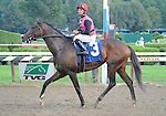 10 September 06: Keertana (no. 3), ridden by Jose Lezcano and trained by Thomas Proctor, wins the 15th running of the grade 3 Glens Falls Stakes for fillies and mares three years old and upward at Saratoga Race Track in Saratoga Springs, New York.