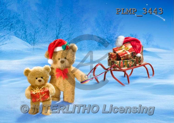 Marek, CHRISTMAS ANIMALS, WEIHNACHTEN TIERE, NAVIDAD ANIMALES, teddies, photos+++++,PLMP3443,#Xa# in snow,outsite,